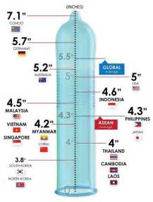 2014 average penis size picture 1