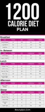 low carb weight loss plan picture 6