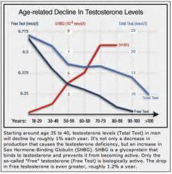 testosterone lab test levels picture 11
