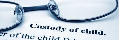 michigan joint custody picture 19