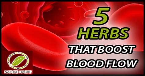 herb supplements for increase blood flow to the picture 7