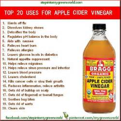 health benefits of apple cider vinager picture 2