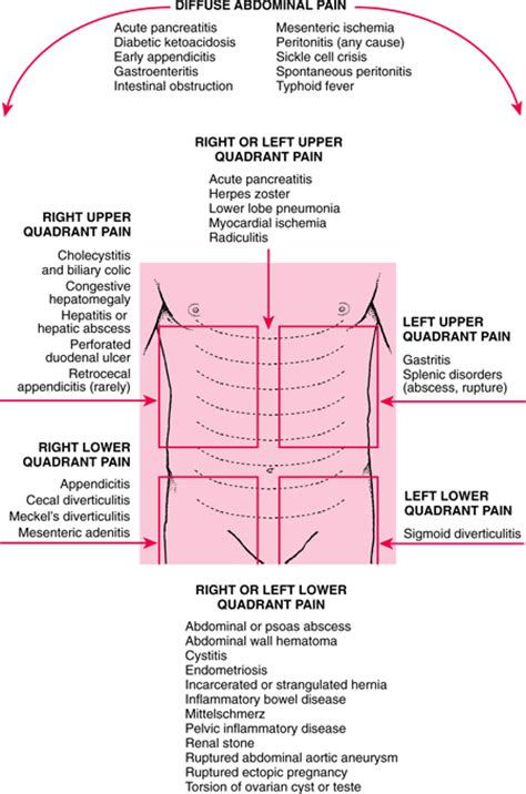 abdominal back bladder and neck pain picture 8