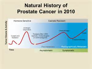 prostate cancer treatments picture 3