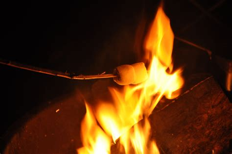 campfire marshmallows picture 7