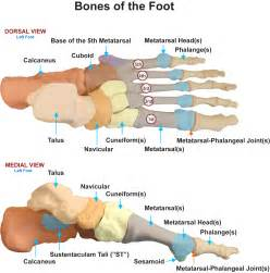 metatarsal phalangeal joint injury picture 10