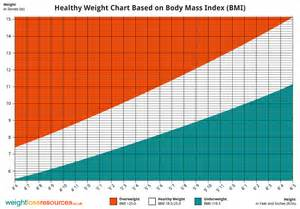 losing weight normal bmi recommendation picture 2