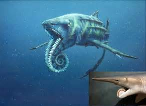 pictures of prehistoric shark h picture 7