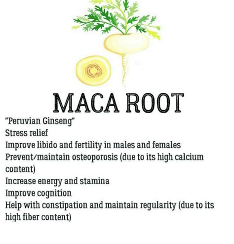 maca stress relief picture 2