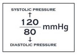 systolic and diastolic and pluse numbers in blood pressure picture 15