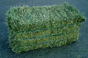 3 string alfalfa bales for wholesale in texas picture 5