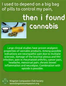 marijuana and digestion picture 14