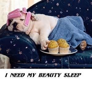 my sleep picture 5