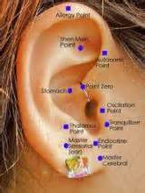 ear acupuncture for weight loss picture 3