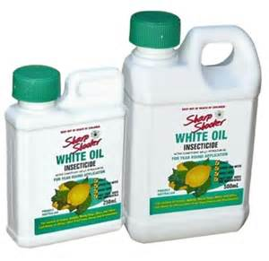 uses of q7 whitening oil picture 7