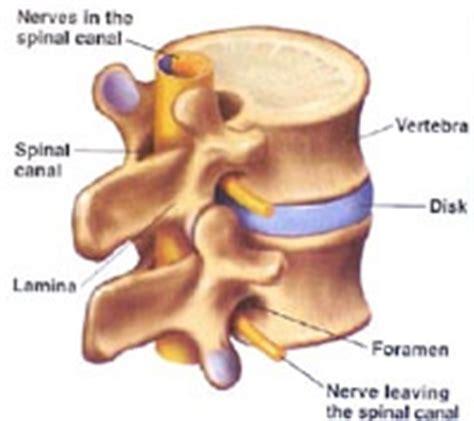 cervical facet joint procedure picture 15