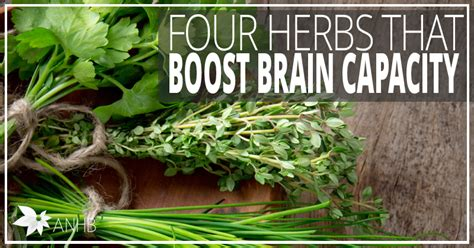 natural food and herbs for the capacity of picture 1