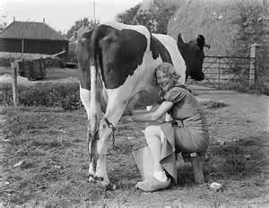 women milking s picture 18