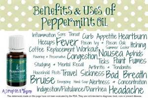 uses for peppermint oil picture 2