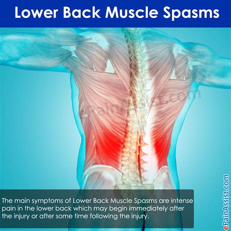 lower abdonimal muscle twitches picture 2