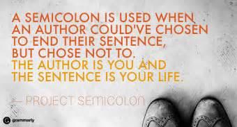 why use a semi colon picture 13