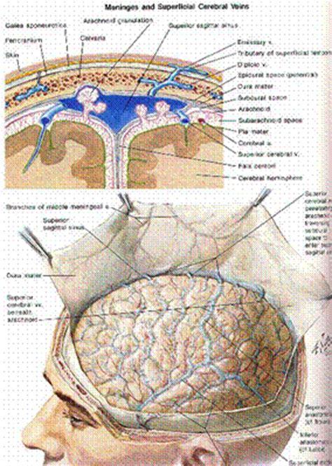 subdural skin irritations picture 1