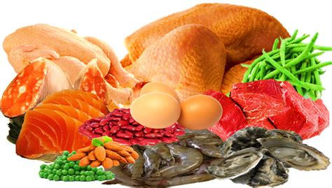 foods that contain enzymes and amino acids for picture 9