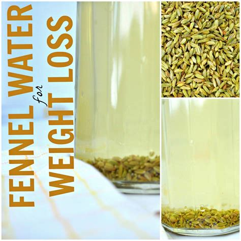 fennel seeds for weight loss picture 3