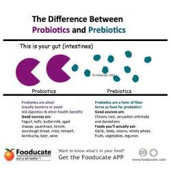 probiotic before and after picture 7
