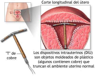estrogen patch on penis picture 7