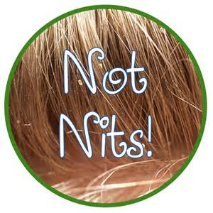 remove nits from hair picture 5