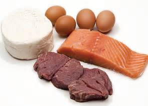 Protein picture 1