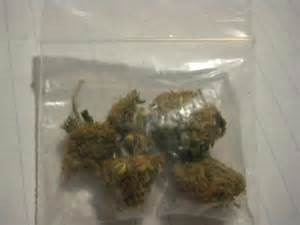 15 g de weed picture 13