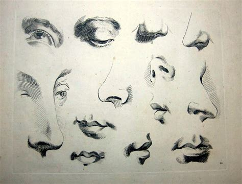 eyes nose & lips picture picture 11
