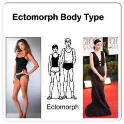how can ectomorphic gain weight picture 2