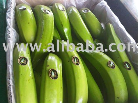 where to buy plantains picture 7