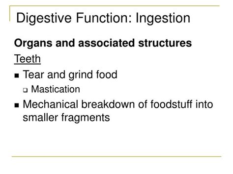 gastrointestinal function picture 5