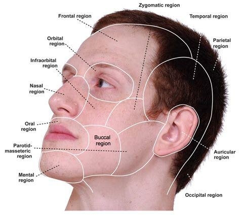 Sches in lip area picture 5