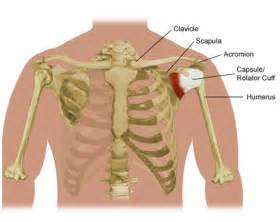 high blood pressure and hip fracture picture 18