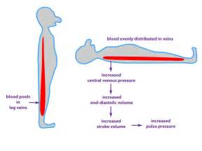 Changes in blood pressure due to postural changes picture 18