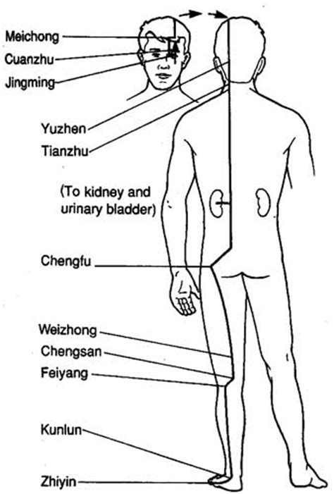 acupuncture and evening bladder incontinence in multiple picture 1