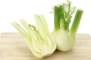 what is fennel picture 1