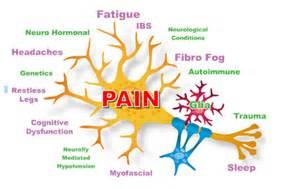 fibromyalgia and thyroid colorado picture 6