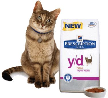 correct dosage of carnitine for cats with hyper thyroid picture 2