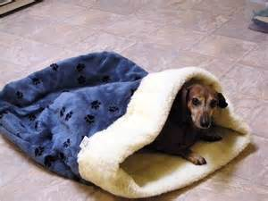 dachshund sleeping bags picture 2