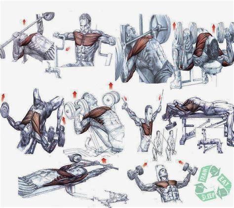 ways to bulk up el movements picture 7