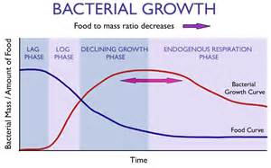microbial growth curve picture 3