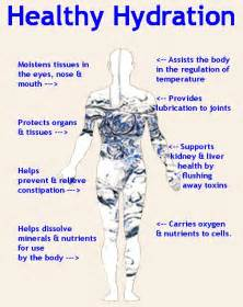 how to hydrate body from the inside out picture 2