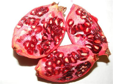food for genital blood circulation picture 5