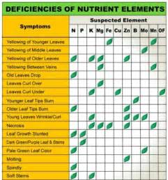 nutrient picture 6